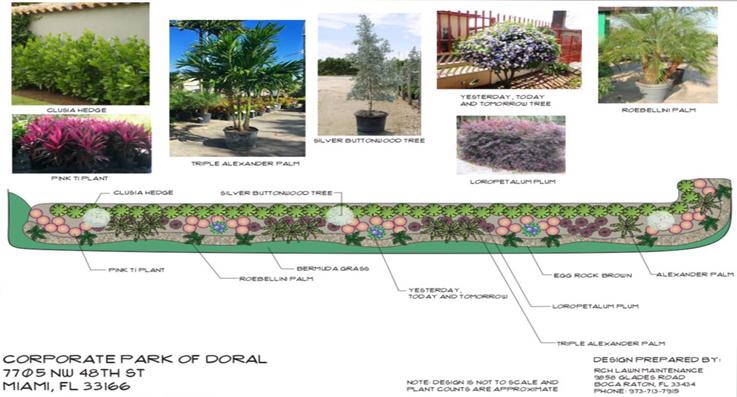 commercial landscape design boca raton
