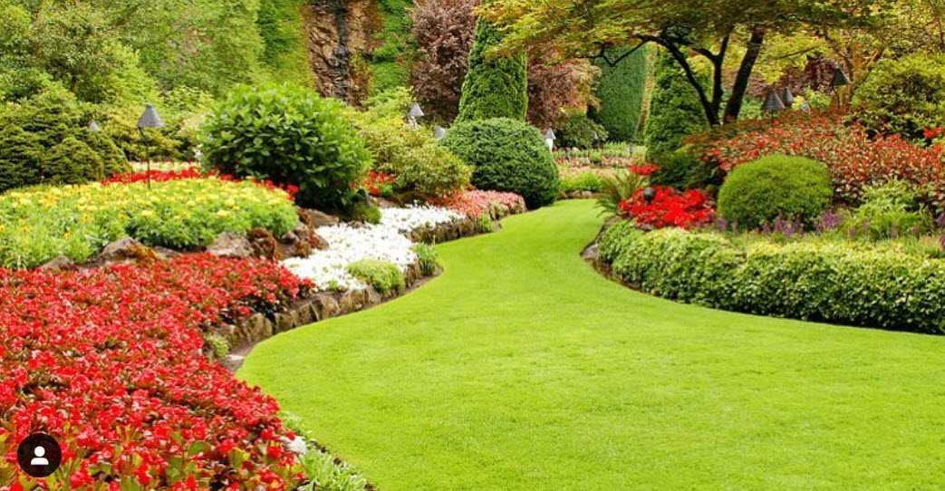 commercial landscaping palm beach
