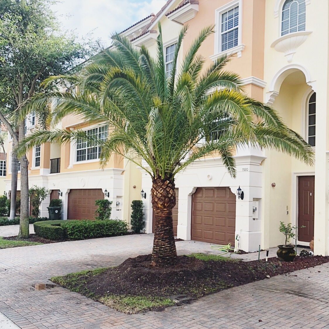 tree services boca raton florida